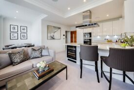 Stunning apartment for rent