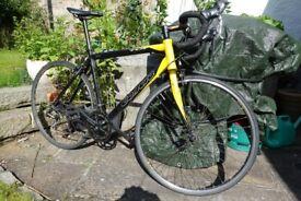 Carrera road bike, large frame