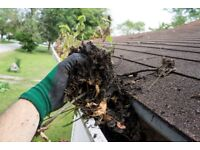 Gutter Cleaning - quality service - great prices