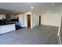 FULLY RENOVATED 6 bedrooms Terrace House with 3 Toilets , Massive Shed and Driveway --Clayhall