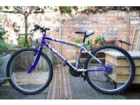 "20"" wheel size mountain bike, 18 speed, suit age 7-12"