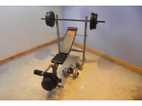 Pro Power Weights Bench with Extra Weights & York Bar Bells
