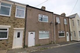 Three bedroom house to rent plus garden