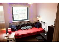 Nice Single Room Available in modern & cosy flat