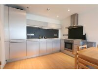 TWO BEDROOM FLAT right by GREENWICH CUTTY SARK, 2 bath , furnished or unfurnished, available now