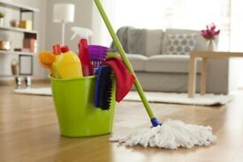 DOMESTIC CLEANING HELP WITH SHORT NOTICE £12/HR