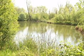 Waterfront lodge development opportunity / fishing cabin site. 10 acres woodland and lake.