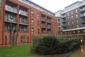 Stunning one bedroom flat to rent - Call 07825214488