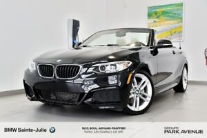 2016 BMW 2 Series Performance Package, Volant Chauffant, Camera