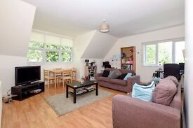 *** Stunning three bedroom period conversion flat, Mount View Road, N4 ***