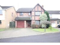 DETACHED FOUR BED HOUSE TO RENT- WEYBRIDGE ST GEORGES HILL CHERTSEY BROOKLANDS BYFLEET ADDLESTONE