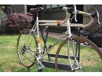 peugeot Aneto racing bike