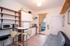Large newly refurbished studio in Hammersmith W6 with direct access to a garden.