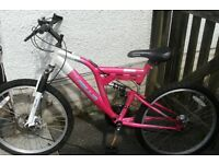 Girls large bicycle 15 gears, disc brakes, suspension.