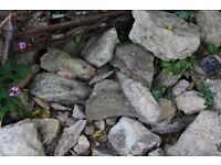 Rockery or garden wall rocks, various sizes. Free!