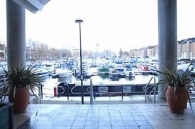 SURREY QUAYS / SE16 - PENTHOUSE FLAT - SPLIT LEVEL - 3 DOUBLE BEDROOMS - MID JANUARY AVAILABLE