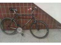 CUSTOM BUILT RIDGEBACK Single Speed Bike with GOOD BRAKES & TYRES RECENTLY SERVICED