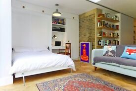 Architect's Garden Flat - Dalston / Stoke Newington (avail until end of month)