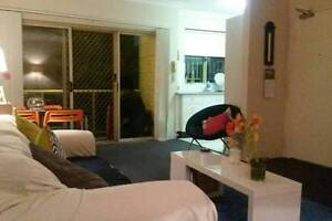 Bondi Junction 1 bed apartment for rent over Christmas & New Year Bondi Junction Eastern Suburbs Preview