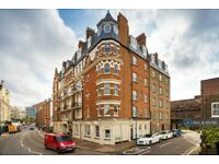 1 bedroom flat in University Mansions, London, SW15 (1 bed) (#1115786)