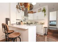 One bedroom flat to rent on Lee High Road