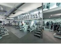 Fitness Advisor for luxury boutique health club in Notting Hill