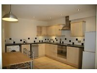 Modern 1 Double Bed Apartments in Broomhill S10