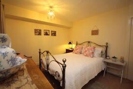 1 Bedroom Apartment available in JANUARY on Clerk Street, Edinburgh (39)
