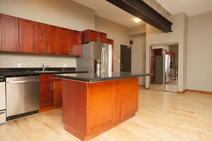 Amazing Loft Style Unit In Downtown Kingston
