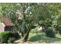 SB Lets are delighted to offer to this fantastic opportunity to rent a two bedroom cottage.