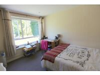 Three bedroom apartment available for students/ professionals - Close to City and UOB
