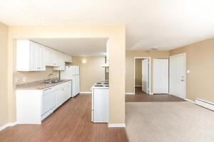 Amazing 3 bedroom Townhome! Pay only $800.00 for the first year! Edmonton Edmonton Area image 2