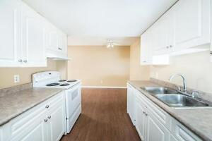 Amazing 3 bedroom Townhome! Pay only $800.00 for the first year! Edmonton Edmonton Area image 4