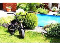 Rocker 2 Mini BMX - 24 Carat