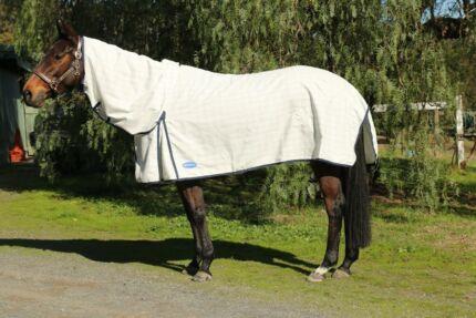 Horse Rug Combo