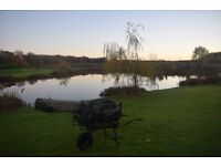 Complete Coarse / Carp Fishing Set Up - 6 Months Old - All Top Brands