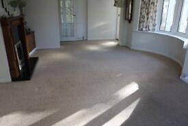 Beige carpet 7.6m x 4.0m
