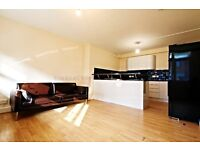 Very modern and spacious 5 bedroom flat with private garden in Peckham