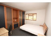 A modern double room in a friendly, female only flat located close to zone 2 station& shops