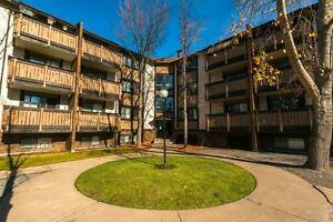 Canyon Pointe Apartments - 3424 52 Avenue