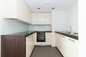 Luxury One Bedroom Apartment To Rent In The Heart Of Central London SE1