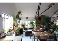 Gorgeous bright room , wooden floors in Stunning warehouse home all bills inc