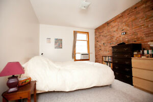 Large 1 Bedroom Unit in Downtown Kingston