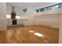 G05-Spacious TWO BED FLAT & Study Room (Ground Floor) with WiFi Communal Gardens & Parking-Highgate