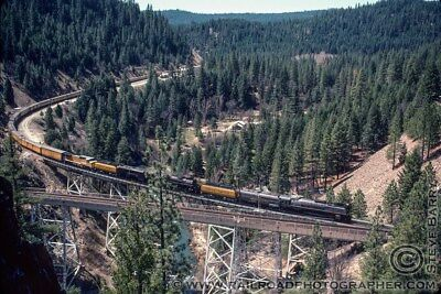 844, 3985 UP STEAM ENGINES DOUBLE HEADED THROUGH FEATHER RIVER CANYON CAL.