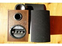Mordant Short Aviano 1 Speakers - for spares / parts