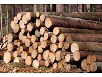 Seeking wood/logs