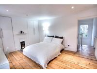 Extra-large double room available August in Lambeth North. Perfect for professionals!