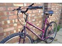 "Ladies 26"" Falcon Interceptor Mountain bike"