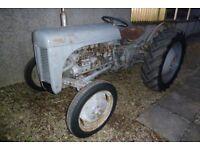 Ferguson TEF Diesel Tractor 1953